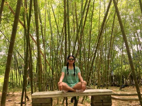 Mucha naturaleza en el Huerto del Bambú en Tuxpan, Veracruz