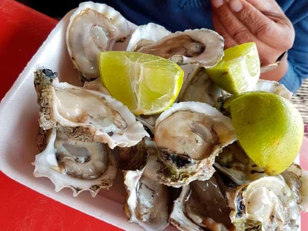 Deliciosas ostiones en su concha del Restaurante Mar de Plata en la playa de Tuxpan, Veracruz