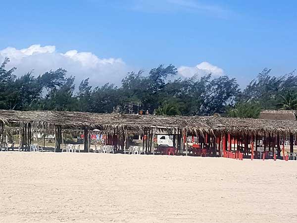 Palapas en la playa del hotel Paraíso Real
